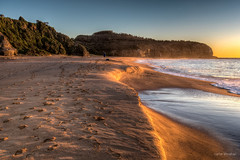 Everyone leaves their mark (JustAddVignette) Tags: ocean sea seascape beach water sunrise dawn landscapes early sand sydney peaceful australia newsouthwales goldensands northernbeaches seawater turimetta