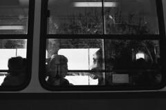Tram reflections (Celluloid fan) Tags: bwfp