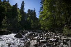 Rapids (haqiqimeraat) Tags: dunkeld hermitage landscape scotland nikon tokina stream rocks
