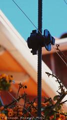 cuidado! (ojoadicto) Tags: closeup abstract abstracto cerca vertical luz dia