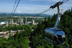 Portland Aerial Tram (Noble Silence) Tags: usa oregon portlandoregon mounthood portlandaerialtram