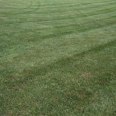 Green (Lynch Park) (jakerome) Tags: newengland lumixg20f17