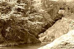 Cunningham Falls SP ~ sepia sliding (karma (Karen)) Tags: trees sepia falls waterfalls thurmont hss mayland frederickco cmwd mdstateparks sliderssunday cunninghamfallssp