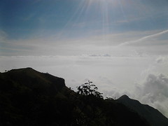 "Pengembaraan Sakuntala ank 26 Merbabu & Merapi 2014 • <a style=""font-size:0.8em;"" href=""http://www.flickr.com/photos/24767572@N00/27163032935/"" target=""_blank"">View on Flickr</a>"