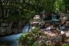 Flows (Naebula) Tags: wood longexposure verde water 35mm river lens woods nikon rocks outdoor fiume soviet flowing rocce acqua ruscello mir silky bosco foresta longexposition setosa longexpo lungaesposizione nd1000 d700