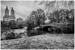 Snow at Bow Bridge, Central Park. NYC (JORGE_DIVE) Tags: bowbridge centralpark nyc manhattan