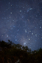Starry night (daniellih) Tags: longexposure light sky june night star australia melbourne victoria nightview starry 2016 canonbody hurstbridge nikonlens freelens freelensing daniellih