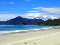 Ruggedy Range from Sealers Bay (dracophylla) Tags: newzealand codfishisland whenauhoa