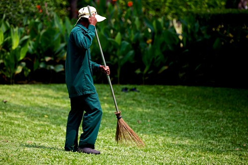Sweeping the grass