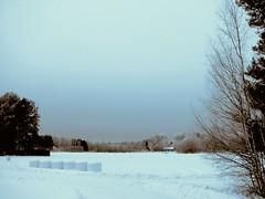 winter scene2 (_omnivore_) Tags: blue winter ice field finland scenery