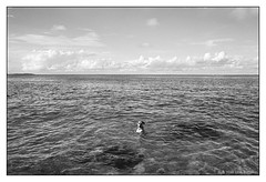 happy dog  #180 (lynnb's snaps) Tags: ocean bw dog film dogs clouds coast sydney olympus 2016 om4 panfplus omzuiko28mmf35