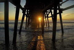 Between the lines.... (Joe Hengel) Tags: socal southerncalifornia sunset sanclemente sanclementepier sea theoc orangecounty oc ocean outdoor orange sun sunlight sunglare goldenstate goldenhour golden glow california beach seascape seashore seaside sand waves water watchingthesunset sunburst pier reflection reflections pilings