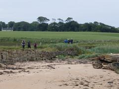 Sand (Brian Cairns) Tags: saintandrews cambo fifecoastalpath kingsbarns brianbcairns therockandspindle buddoroack