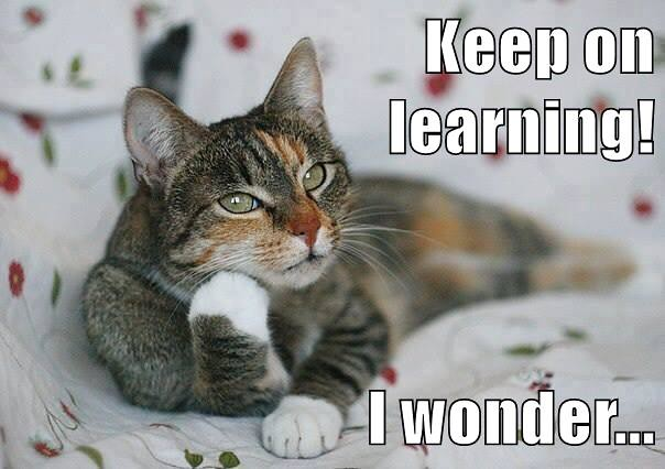 Keep on learning! I wonder...