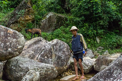 (Pet licule) Tags: field rice paddy vietnam cai ta lao sapa phin laocai terasse paddies terraced taphin phien