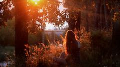 181/366: magical land II (Andrea  Alonso) Tags: light sunset sun selfportrait me atardecer ray 365 autorretrato rayos 366