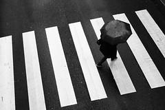 Passy (Nicolas MALLUS - Paris streetphotography) Tags: passy paris umbrella streetphotography street monochrome minmal minimalist minimalism noir et blanc