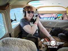 """This pup enjoys the very realistic movie during the flight. It's called, """"Back Window."""" Mr. Bones & Co in NYC played a huge role in this rescue. You can watch the video on this rescue at http://ift.tt/28PI60N and become a supporter at http://pilot.dog/don (Pilot.Dog) Tags: pilotdog pilot dog rescue dogs aviation"""