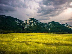 Landscape... (Hasan Yuzeir) Tags: summer sky cloud mountain storm nature grass yellow landscape sony xperia hasanyuzeir