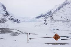 IMG_1409 (Pramodh Yapa) Tags: columbia alberta icefield