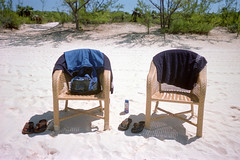 Beach Chairs (Brock5604) Tags: cruise carnival trees summer vacation sky film beach sport shirt 35mm island gold bottle sand shoes paradise chairs bright kodak outdoor sunny backpack flipflops tropical towels bahamas wicker 800 halfmooncay waterproof disposable sunscreen lotion ultramax onetimeuse