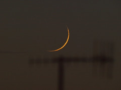 Young Moon above the rooftops  11-05-13 (James Lennie) Tags: sunset moon photography dusk olympus astro luna crescent craters devon astrophotography astronomy dslr lunar waxing moonshot crescentmoon az3 waxingmoon refractor ed80 primefocus skywatcher mooncloseup lunarphase lunarphotography e410 lunarcloseup