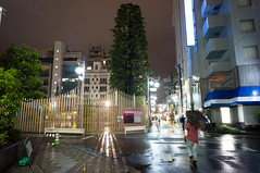 20130511-DSC09654.jpg (toshworld) Tags: japan tokyo voigtlander 15 45 f45 15mm  swh vm nex superwideheliar 1545 nex5n