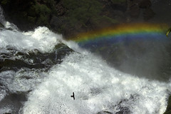 Rainbow at Iguassu Falls (Paul Blake Photography) Tags: waterfall rainbow iguazu iguassufalls