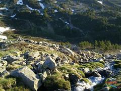 Sierra de Urbin (Historia de Covaleda) Tags: espaa spain fiesta paisaje douro pinos soria historia pinar tradicion duero covaleda