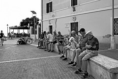 """ Meeting with mascot "" (pigianca) Tags: sea dog cane blackwhite italia mare italu streetphoto biancoenero candidportrait follonica ricohgriv"