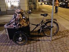 Copenhagen2013-17 (Mechanic Matt) Tags: copenhagen cargobike bakfiets calsberg cargobikes bakfiet bakfeits bakfeit