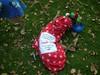JingleBellWalk2011099