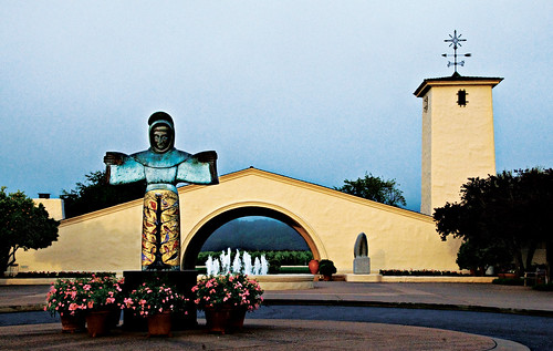 Modavi winery
