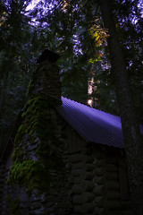 Cabin in the Woods (giberin) Tags: trees roof light chimney sky green rooftop wet mystery forest moss scary cabin logcabin hide pacificnorthwest foest