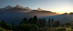 Annapurna sunrise (bingleyman2) Tags: