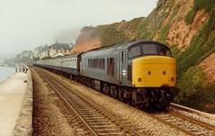 45012 1M86 1000 Paignton - Liverpool. Lime Street at Dawlish 18.08.1984 (The Cwmbran Creature.) Tags: rail class 45 british