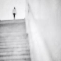 Immortality (EXPLORED) (Mister Blur) Tags: blackandwhite blancoynegro blur bw climbing d7100 desenfoque immortality inmortalidad nikon olympic park pearljam sculpture seattle stairs seattlelite snapseed rubén rodrigo fotografía innamoramento