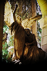 Staglieno - Lives in the Stone 13 (tjshot) Tags: life italy woman color colour tourism colors cemetery grave graveyard silhouette statue stone angel zeiss speed dead death 50mm colours fuji gloomy cross faith tomb tombstone profile silhouettes statues crosses belief ground x tourist tourists jena holy genova angels carl sacred burial lives flektogon gloom trans visitors visitor f4 tombs booster monumental believes staglieno burials xe1 metabones