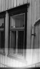 Trondhjemske Vinduer XXII (Trondheim byarkiv) Tags: windows window norway norge archive norwegen archives 70s noruega 1972 trondheim srtrndelag ilford ilfordhp4 1973 vinduer vindu noorwegen trndelag film112 arkiv trondhjem byarkiv trondheimkommune 70tallet byantikvaren trondheimbyarkiv byantikvarensnegativsamling torh43p02 f8446