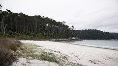 Fortescue Bay
