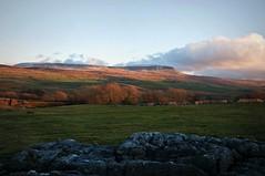 Evening sun on Pen-y-ghent Side (Nurmanman) Tags: sunset evening dusk yorkshire limestone yorkshiredales penyghent hortoninribblesdale langcliffe ribblesdale stainforth selside