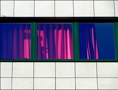 cool savage (misone2000) Tags: pink detail cool fenster lila savage gardinen misone2000