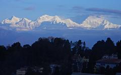 Mighty Kanchenjunga, View from hotel (Sougata2013) Tags: city morning blue sky india mountain nature landscape nikon cityscape hill himalaya mighty bengal darjeeling hilltop bangla hillstation westbengal morningview kanchenjunga himalayanrange sonarbangla kanchenjungarange nikoncoolpixl120 mightykanchenjunga