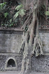 Ubud, Bali (J'Adoretotravel) Tags: trees bali asia sacred ubud ancientcivilisations jadoretotravel