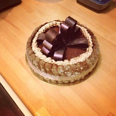 Charlotte au chocolat (Gat'Oh) Tags: charlotte biscuit chocolat mousse cuillre noeud cacao