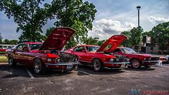 Big block Mustangs (B&B Kristinsson) Tags: usa ford 1969 oklahoma 1970 tulsa mustang fordmustang boss429 fordmustangmach1 cobrajet fordmustangboss429 midamericafordandshelbynationals2012 midamericafordandshelbynationals mustangmach1428cj mach1428cj