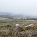 2013-09-15 09-22 Kalifornien 109 Pescadero Marsh Natural Preserve