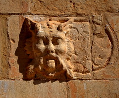 Carota a un mur de Santa Maria de Montblanc. (Angela Llop) Tags: spain eu catalonia montblanc laconcadebarber wlmri510007215
