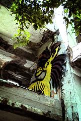 Pony (Tunde Tenkei) Tags: streetart art abandoned graffiti nikon mural hungary decay budapest pony staircase d200 romaipart