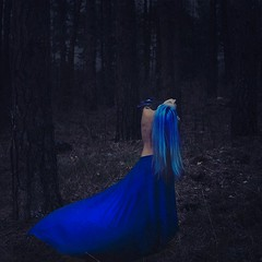 gathering magic (brookeshaden) Tags: selfportrait bird art girl fairytale forest photoshop bareback photography woods magic bluejay editing bluehair whimsical fineartphotography darkart bluedress conceptualphotography brookeshaden promotingpassion